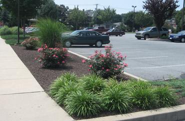 Commercial-Landscape-Lancaster-PA